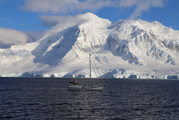 We're #hiring ! #Postdoc on #SouthernOcean #Biodiversity Observations, Models and Policy - 10+ years position @RBINSmuseum and @ULBruxelles in project SO-BOMP #FEDtWIN @belspo. Application deadline 30/09 ! #antarctic   More info here: https://t.co/PQCSV9xgSC https://t.co/zLuqobKlly
