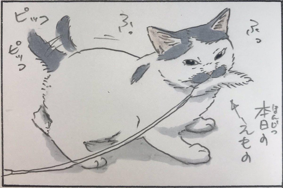 『ノリ吉すぺしゃる』