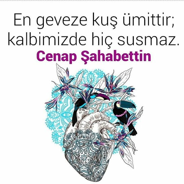 #ümit #hayat #aşk #allah #umut #edebiyat #sevgi #su #dünya #istanbul #islam #şiir #hzmuhammed #ölüm #tebliğ #sabır #korku #gazze #diriliş #saygı #ahiret #vatan #sünnet #rasulullah #iman #dün #ayet #kader #ümmet #tevbe, https://t.co/oWlLOAf1I2