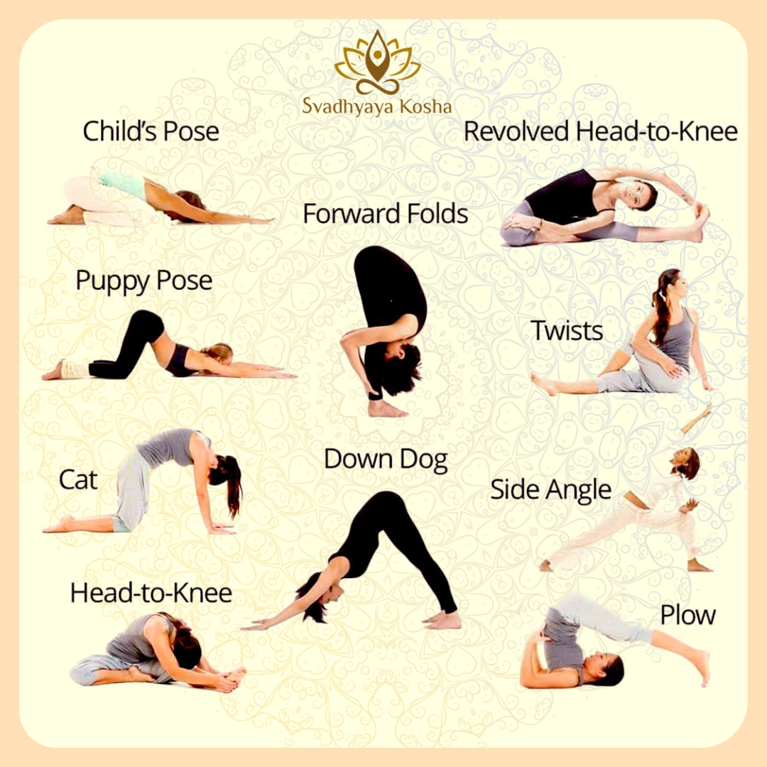 Low Back Yoga Poses #yoga #yogagirl #yogalife #yogateacher #yogapose #FitnessMotivation #fitness #fitnessjourney #fitnessgirl #FitnessGoals #HealthyEating https://t.co/vCM9lXo5QN