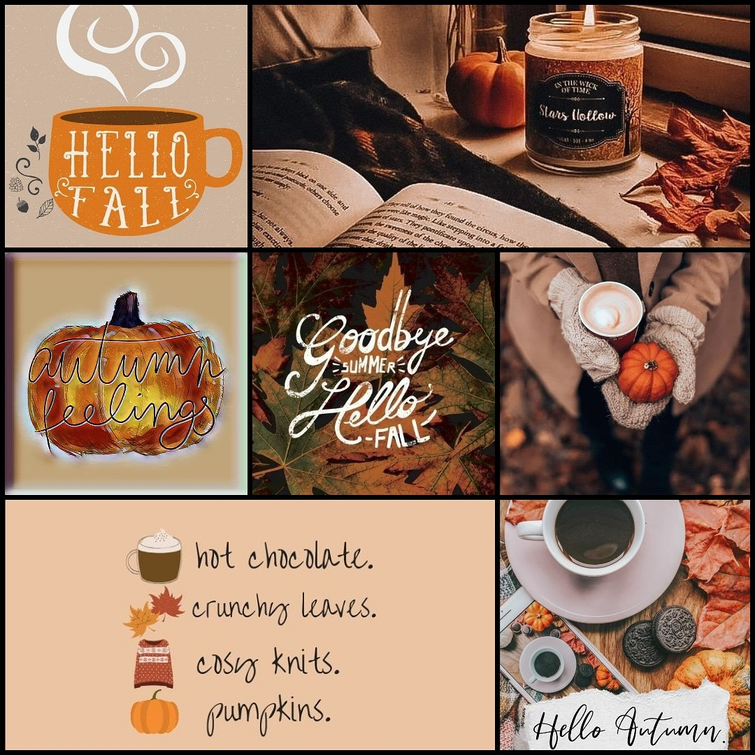 My favorite time of the year 🍂🍁 #firstdayoffall #Autumn2020 https://t.co/NoekKbD2mK
