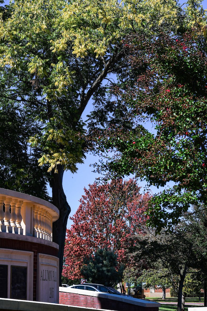 Happy first day of fall, Bucs! 🍂 https://t.co/XLF8ooqfHC