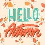 Image for the Tweet beginning: Fall is officially here! 🍁 Getting