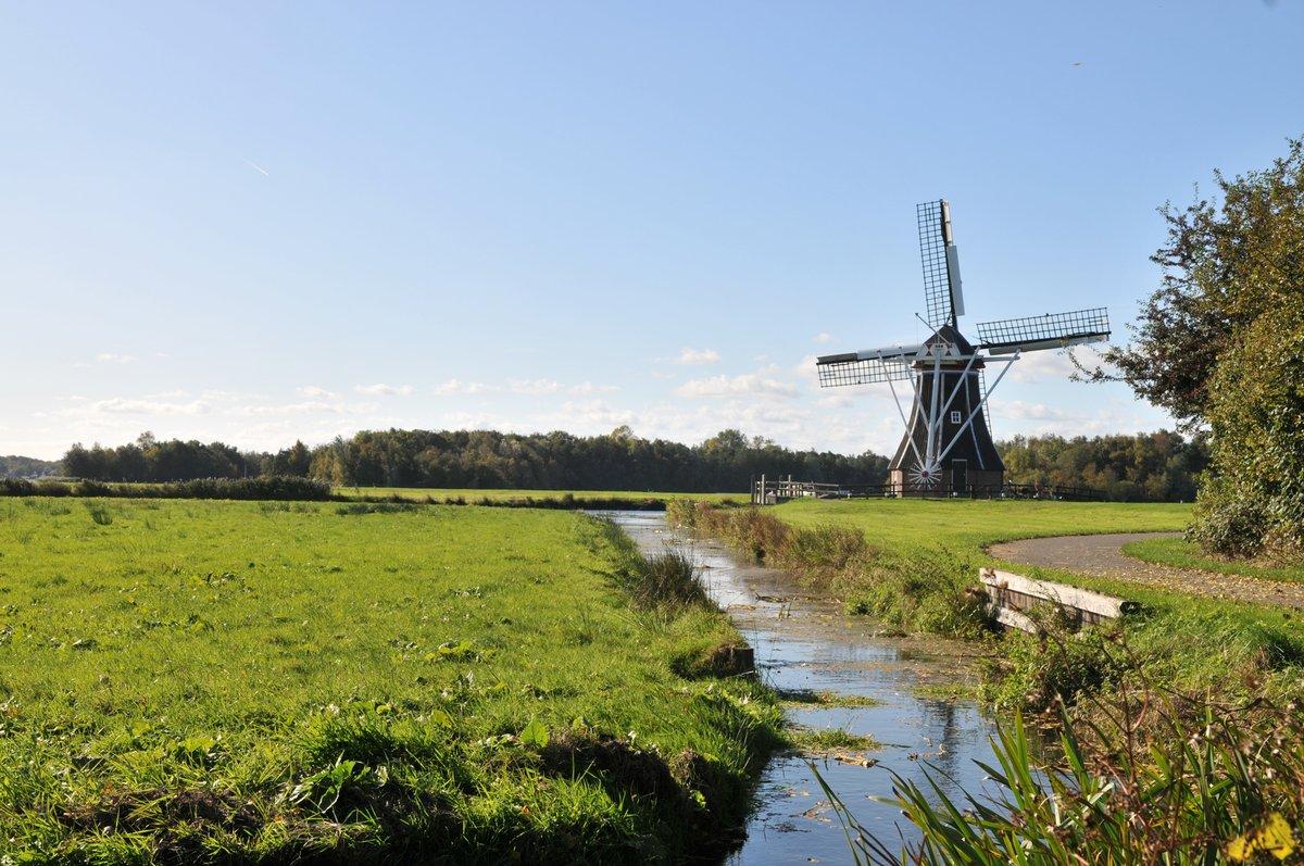 Het Paterswoldsemeer wordt onderdeel van het Natuurnetwerk Nederland. De #natuur van het Leekstermeer en het Paterwoldsemeer worden met elkaar verbonden. De Meerweg bij Haren wordt ingericht voor natuur. De werkzaamheden hiervoor starten volgend jaar.  https://t.co/dW5noLTfyf https://t.co/fotx0lG2XJ