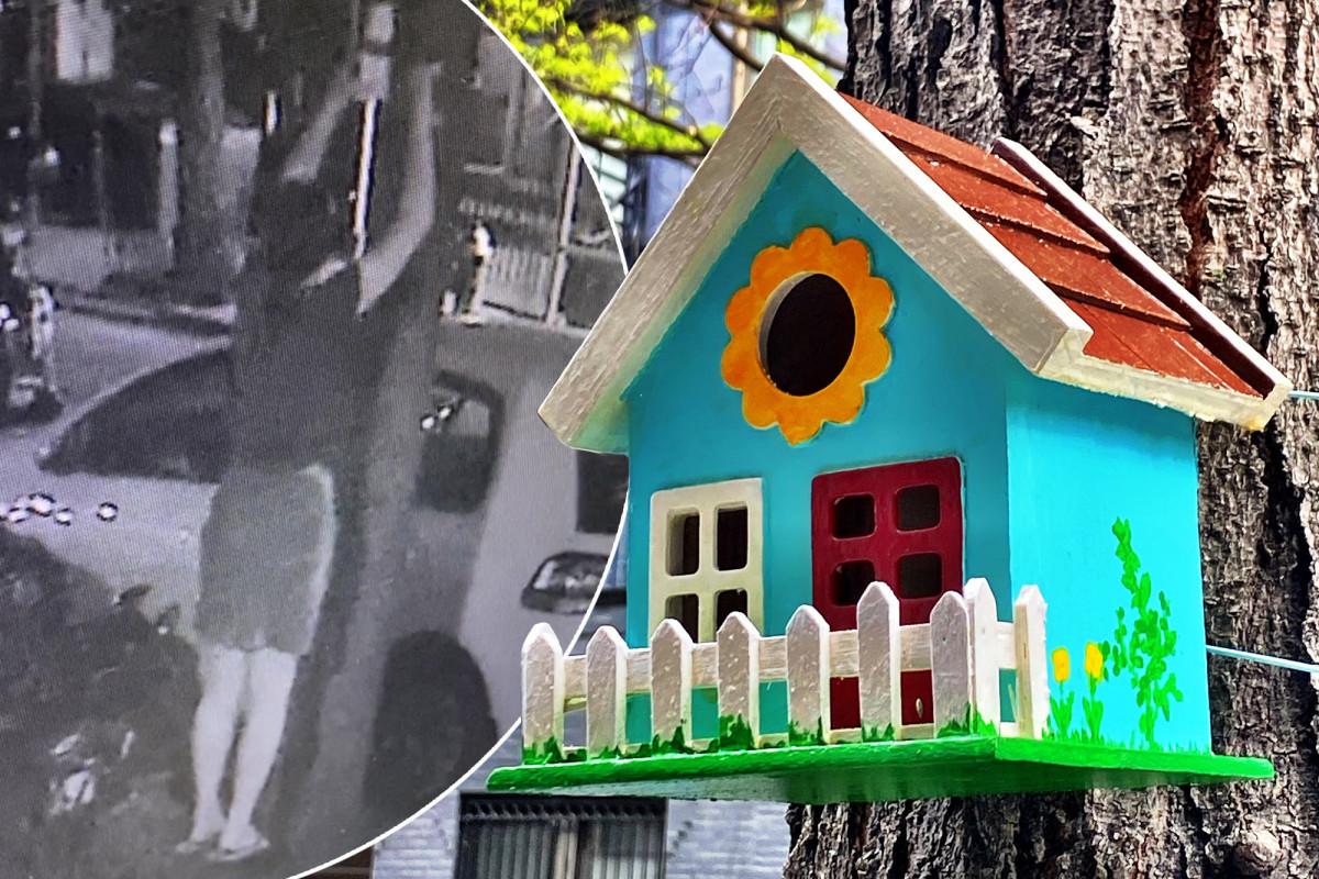 Cuckoo battle over birdhouses allegedly prompts serial-killer notes trib.al/auGCnfZ