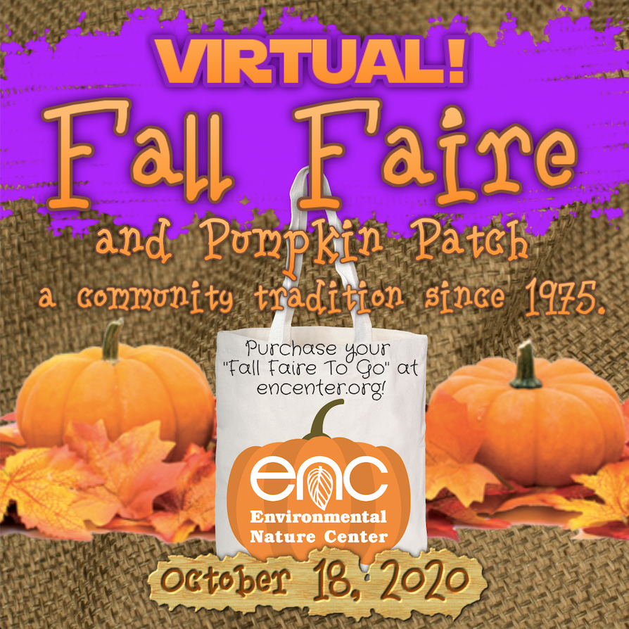 Businesses! The Environmental Nature Center's 45th annual Fall Faire and Pumpkin Patch will be held VIRTUALLY Oct 12-18. Promote your business and help environmental education in our community by donating to our fun Online Silent Auction! https://t.co/LVj8Y1bbFK https://t.co/5VbosXspFI