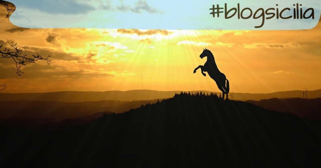 """""""Ragione, io ti sacrifico alla brezza della sera"""". Aimè Cesaire  Buona serata da #blogsicilia"""