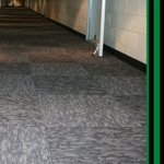 Image for the Tweet beginning: Our new carpet and walk