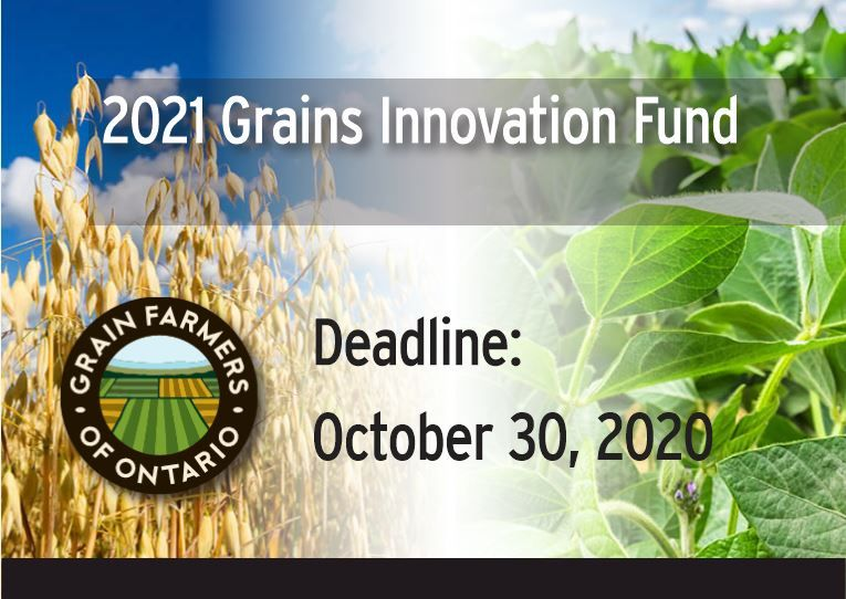 The #GrainsInnovationFund is now accepting applicants! Eligible projects must either open new markets for Ontario grains, expand the use and demand for Ontario grains, promote Ontario grains. For more information on the #GrainsInnovationFund, click here: buff.ly/2RSFQsY