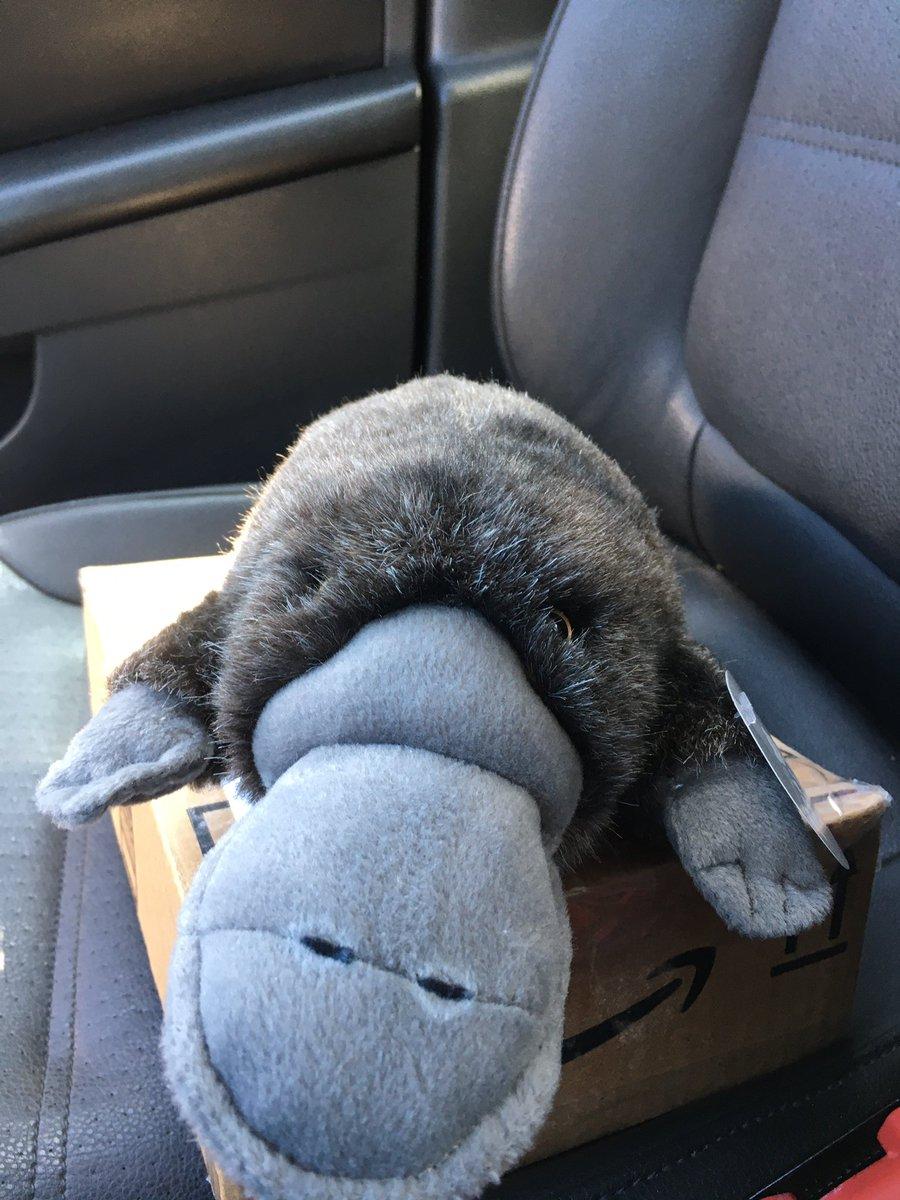 Someone is sad to see a friend go. @Kevin_D_Jones https://t.co/Iq3TI5TOro