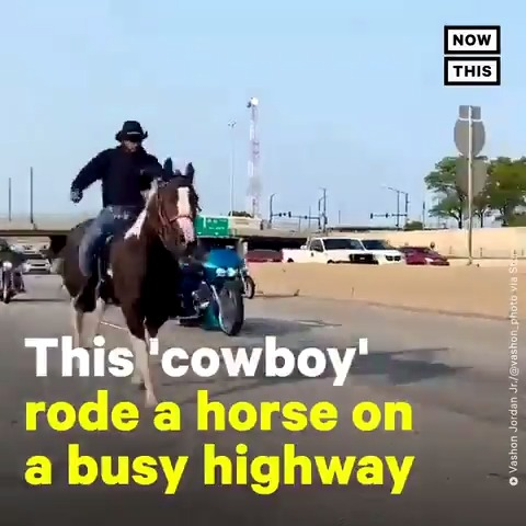 This 'cowboy' rode a horse down a busy highway in support of #KidsLivesMatter, a movement demanding greater investment in youth programs and other needs of children in Chicago https://t.co/h9EM8oiyob
