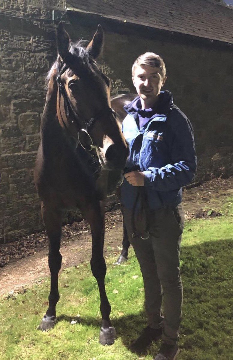 Waitingonanalibi gets the verdict in the stewards room @NewcastleRaces, big thanks to @Tonyhamilton83 and to @danielwatkinso7 for leading our filly up.  https://t.co/mVTVMpVEHt