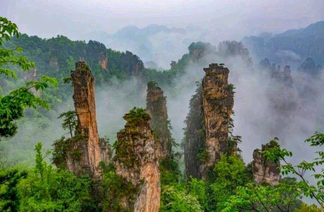 Zhangjiajie Scenic Area is located to the north of Zhangjiajie, Hunan Province of China. It is one of the 40 famous scenic spots in China. It is said to be 'the ampliative miniascape and the contractible fairyland' and was admitted to the World Heritage List in 1992. https://t.co/OxZI6sdFMi