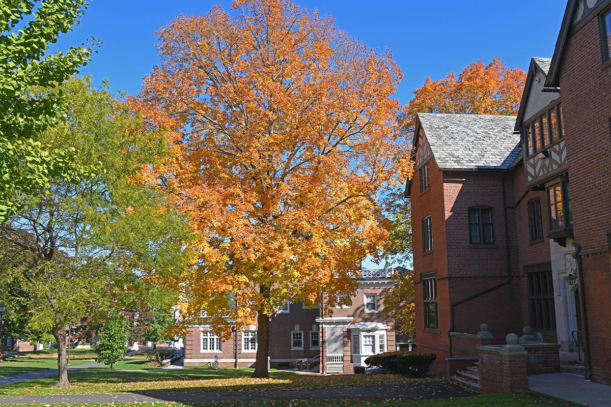 test Twitter Media - Sweater weather is around the corner 🍂  #FirstDayOfFall #WesleyanUniversity https://t.co/c8z7gx6dur