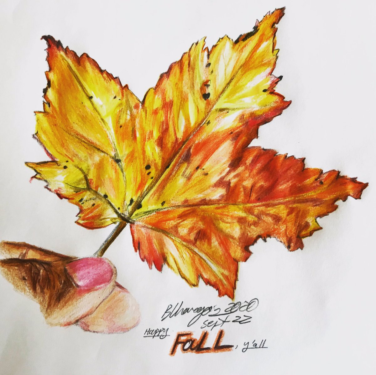 The drawing says it all! 🥰 I'm so happy that it's #fall 🍁, y'all!   #Fall2020 #FallEquinox #AutumnEquinox #Autumn2020 #Autumn #fallleaf #autumnleaf #leaf #colorpencils #coloredpencils #drawing #sketch #Pencildrawing #pencilsketch https://t.co/EA1R5tAzaD