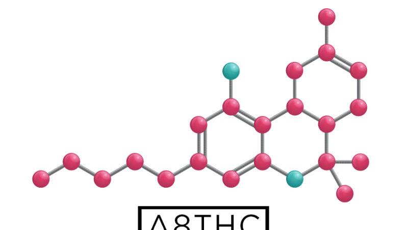 Read The Therapeutic Benefits of #Delta8THC: https://t.co/tUjbHoTGeu  #Delta8 #D8 #cannabis #medicinalcannabis #CannabisMedicinal  #CBD #anticancerous #cancer #cancercare #wellness #health #naturalhealth #naturalhealing #organiclife #hemp #hempoil https://t.co/JUUVEGnHZ9