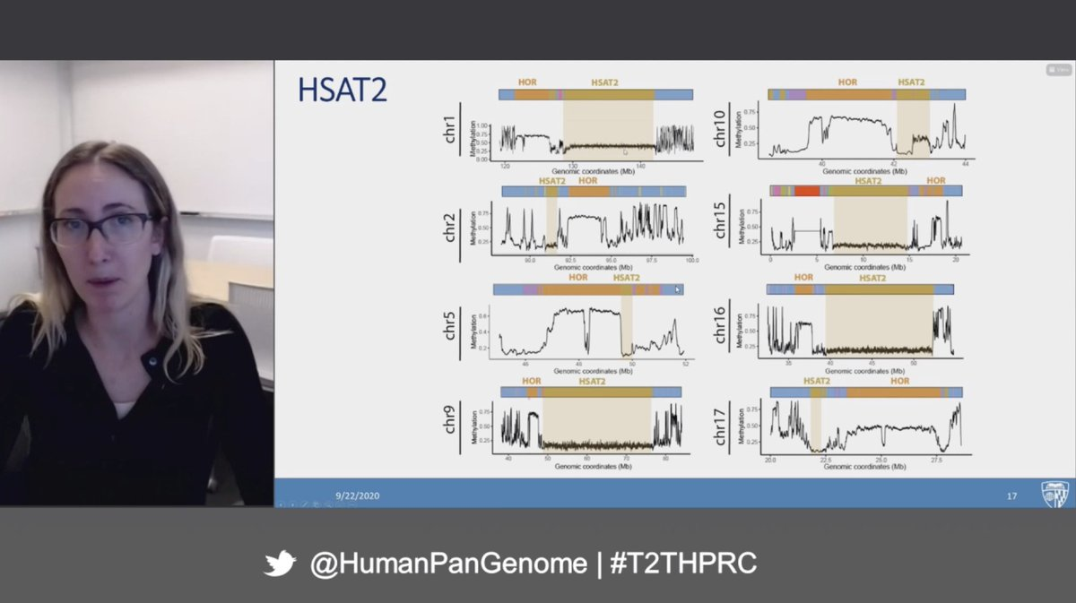 What amazing work @GershmanAriel! The Human Satellites have such interesting genome biology and regulation.  We are now gaining real biological insight to these regions thanks to the #t2t team https://t.co/P2OXOWWJII