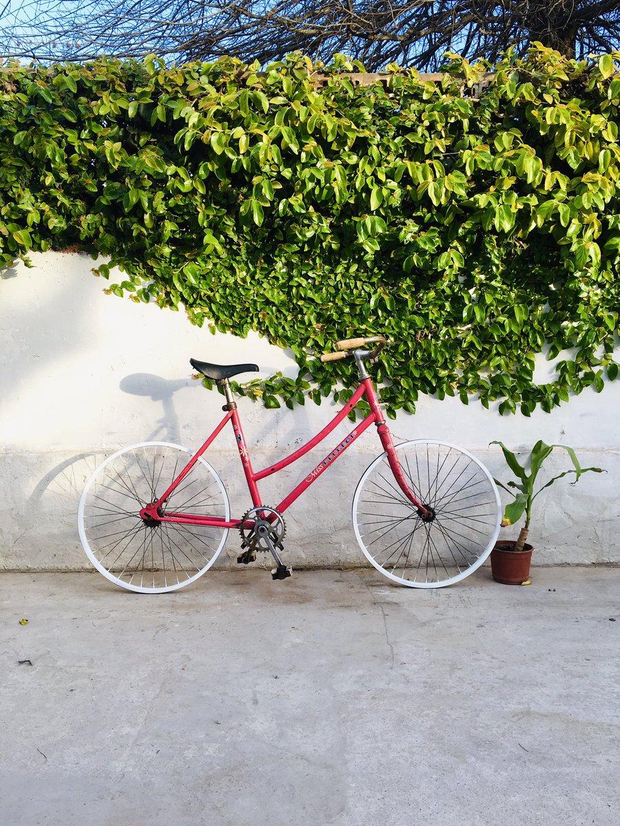 Restaurando esta joyita in process... #bicicletas #restauracion #peugeotbici #ciclismo https://t.co/DBwHG9FY9n