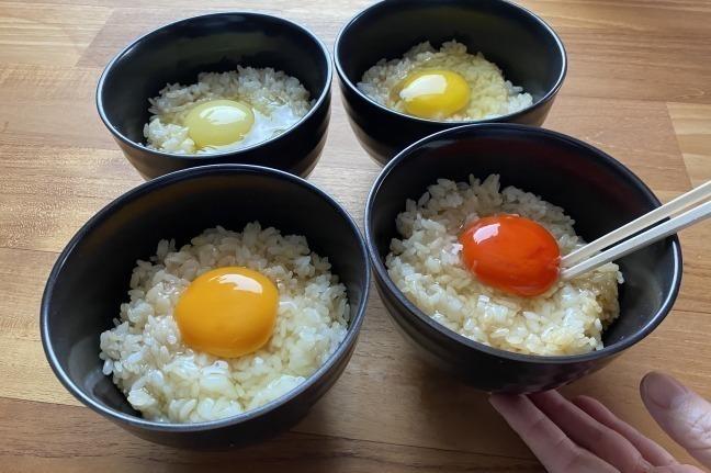 """[明日から開催] 全国の""""レア卵""""が集結する「幻の卵屋さん」池袋駅に、酒かす風味&ユズの香る卵など約40種類 -"""
