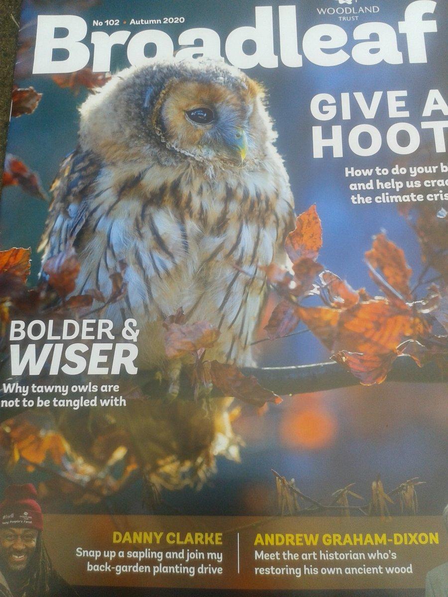 Fantastic #autumn issue of @WoodlandTrust 's Broadleaf magazine 🌲🌳😊 I really enjoyed reading about #TreeOfTheYear 2020 & Trees & Carbon 😊 #StandUpForTrees #EveryTreeCounts #LochLomond https://t.co/iOfuVlg4T9