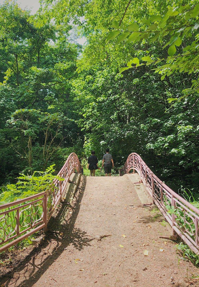 When times get rough, be like a bridge over troubled water.  📷taken in Hokkaido University Botanic Garden  #北海道大学 #北大 #HokkaidoUniversity #garden https://t.co/lXgJLJvMeD