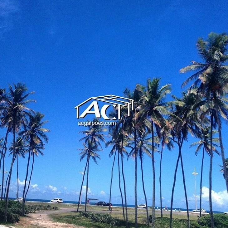🌴 Salvador, Bahia, Brazil. #beach  👷🏽♂️https://t.co/GTradPVdKs #brazil #warehouses #construction #construcao #realestate #investments #galpoes #bahia  #beach #salvadorba #beautifulday #beachlife #salvador #beachvibes🌴 https://t.co/gD4nKRh0Nq https://t.co/LrVZKRS13y