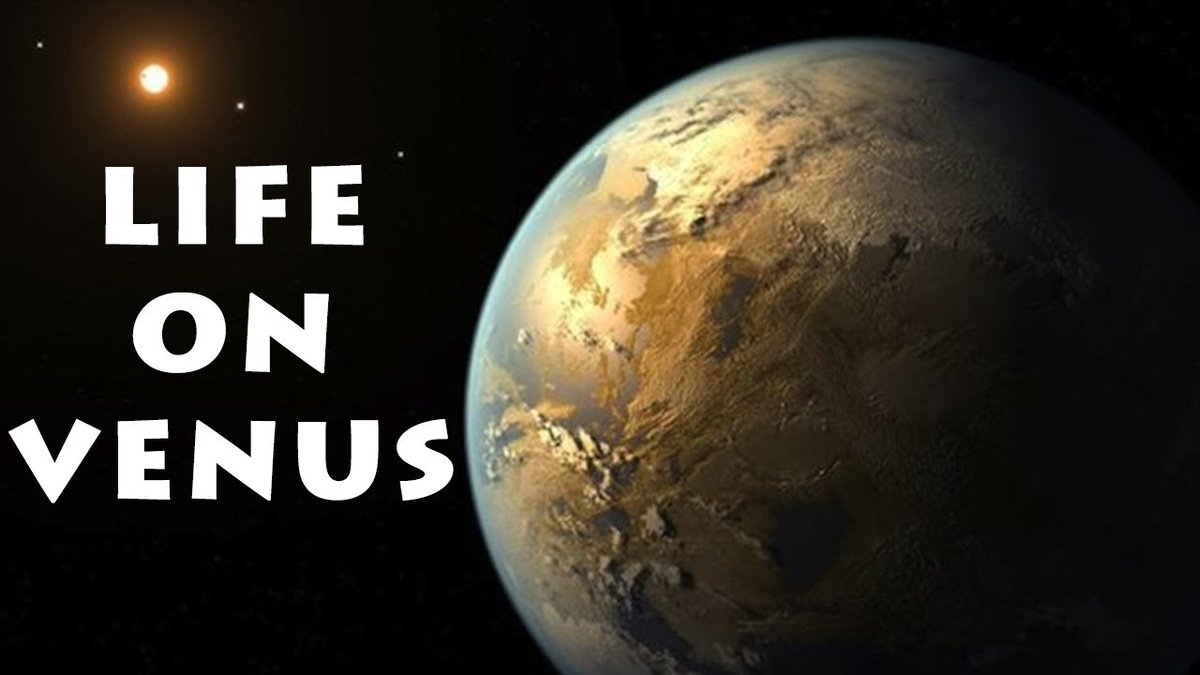 LIFE ON VENUS | Is it really Possible? Watch the full video here to find out; https://t.co/gDoIG17g9H . . . #venus #alien #ufo #life #Extraterrestrials #aliens #mars #NASA #BlueBeam #ProjectBlueBeam #phosphine https://t.co/UqbtpsUSDv