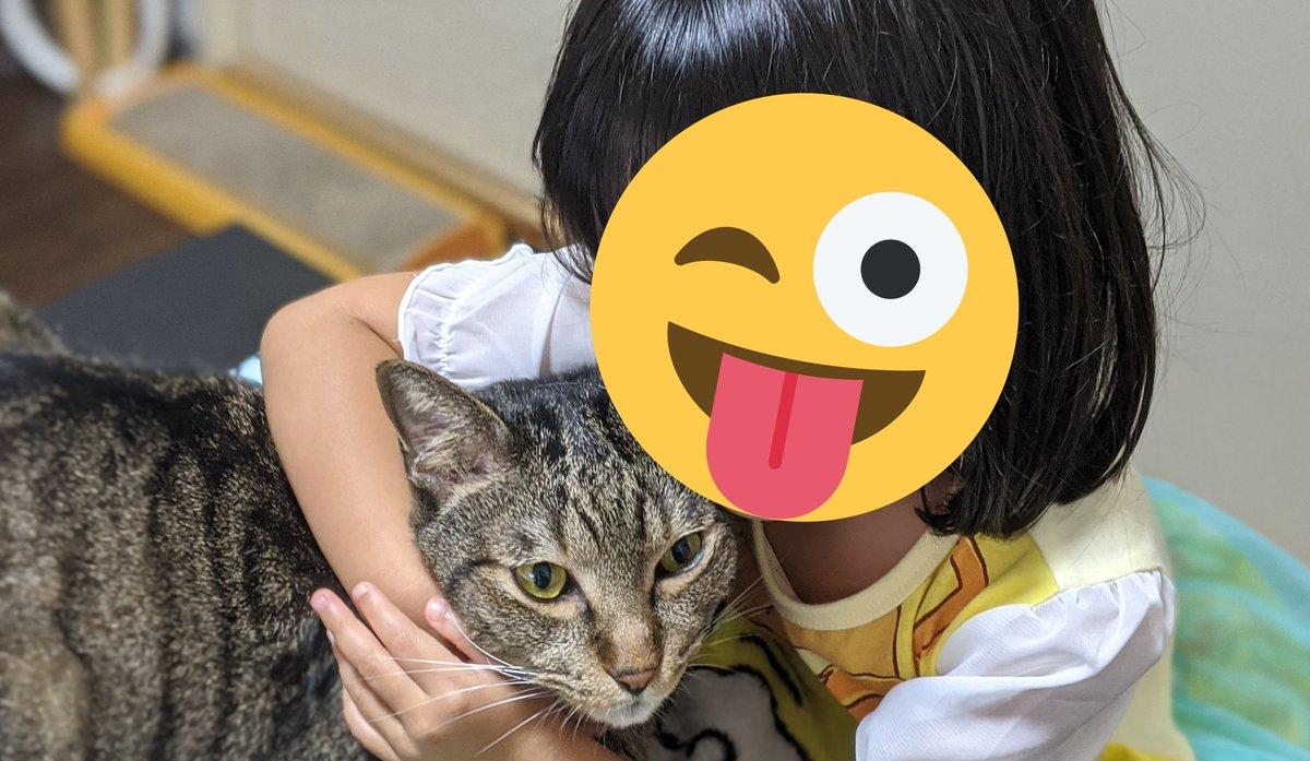 く・・・首が・・・しまるニャ💥愛が重すぎるニヤーーー💦  #ねこ #にゃんこ #猫 #ねこずきさんと繋がりたい #ねこのきもち #ねこ部 #にゃんこ部 #猫好きさんと繋がりたい https://t.co/3noWKAFUr8