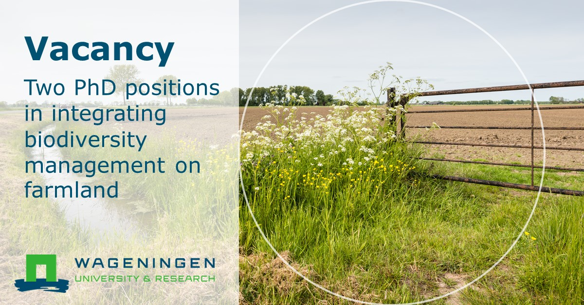#Vacancy | Are you concerned about the declines of #biodiversity in agricultural landscapes, and motivated to identify effective mitigation strategies? Apply now for one of two #PhD positions ➡️ https://t.co/bZ270bhydU https://t.co/uOGggEwOCr