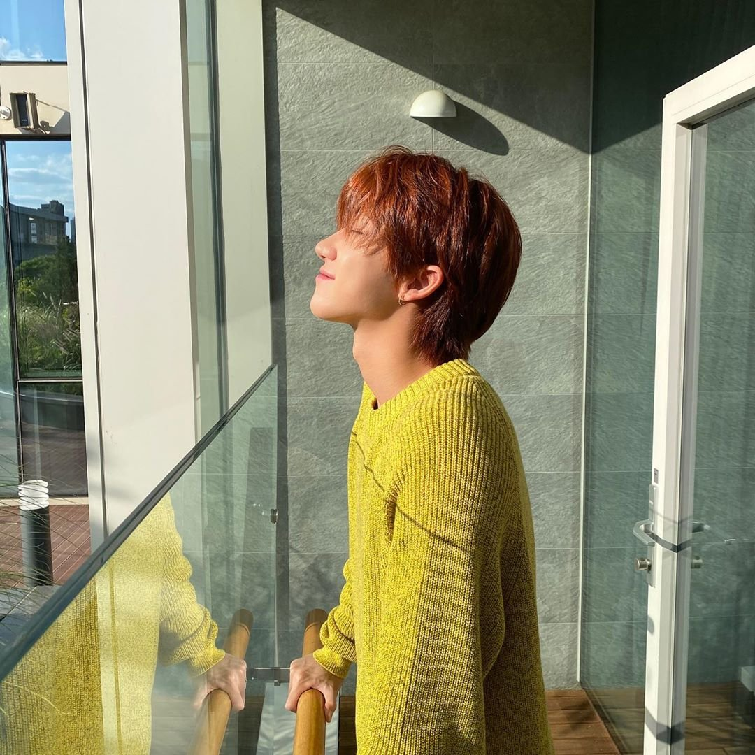 Minghao photosynthesizing 🌞 🌞 @pledis_17  #SEVENTEEN https://t.co/vaxtziWuDJ
