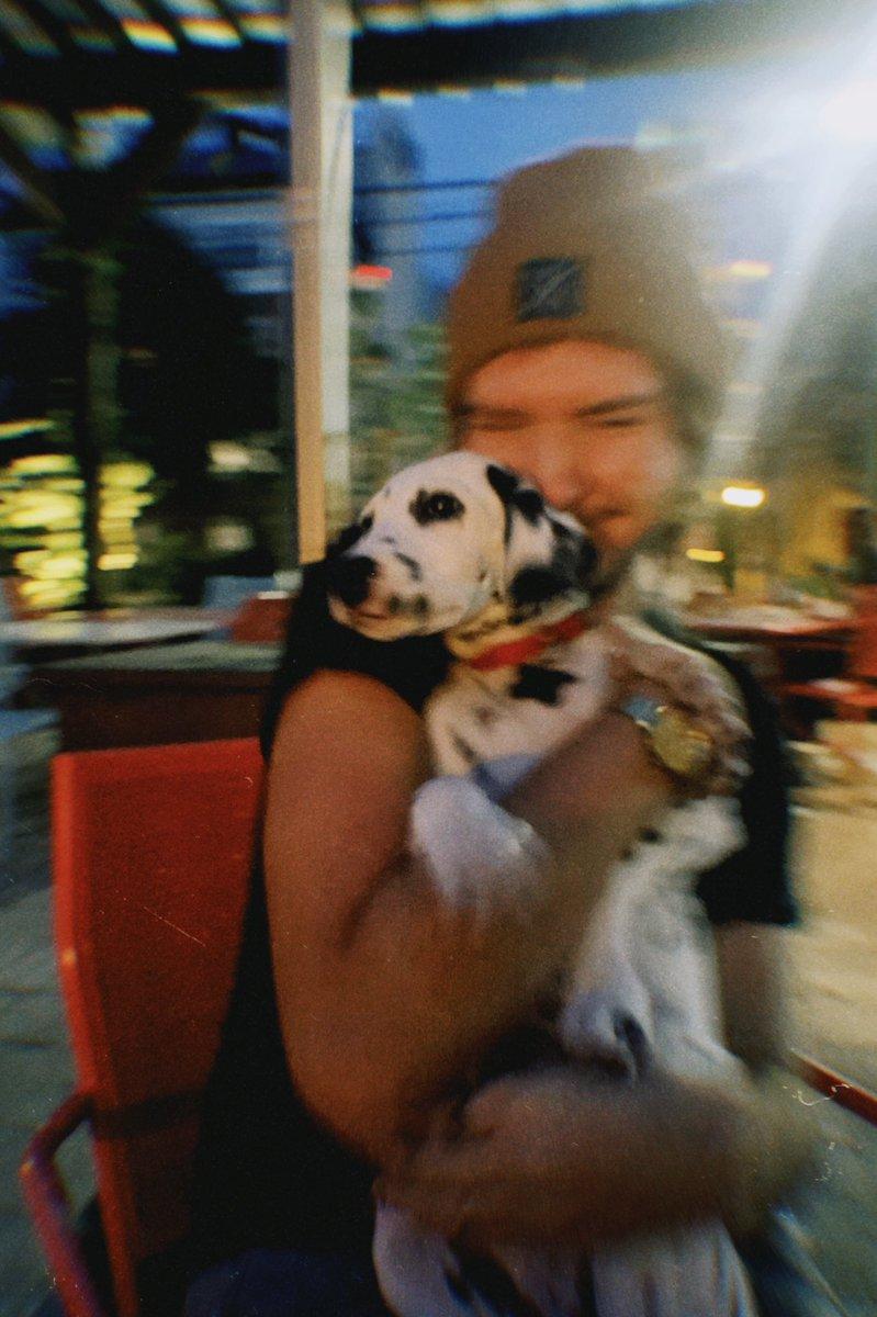 she loves her uncle brandon 🥺 #dalmatians https://t.co/pcgrqa0FCx