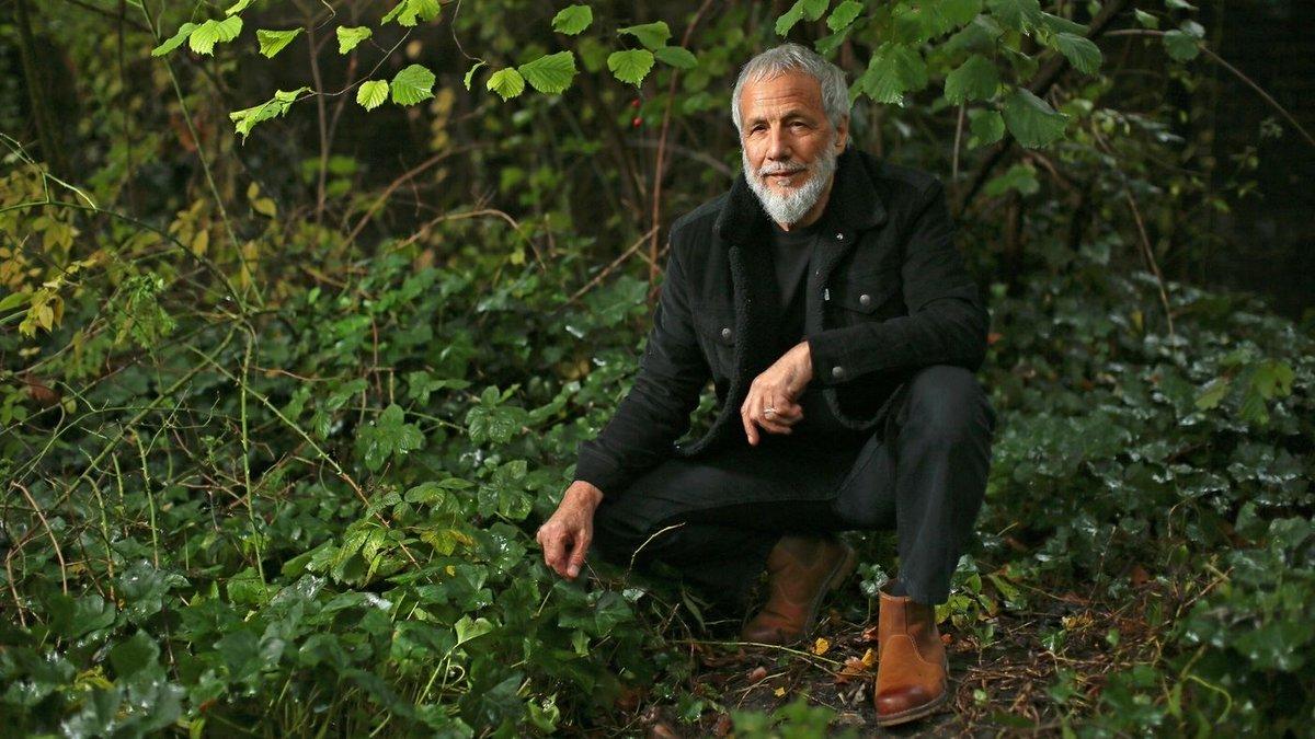 Yusuf Cat Stevens On Remaking 'Tea For The Tillerman' 50 Years Later : All Songs Considered : NPR https://t.co/QGDnjrTXs8 https://t.co/eyYz6A5k48