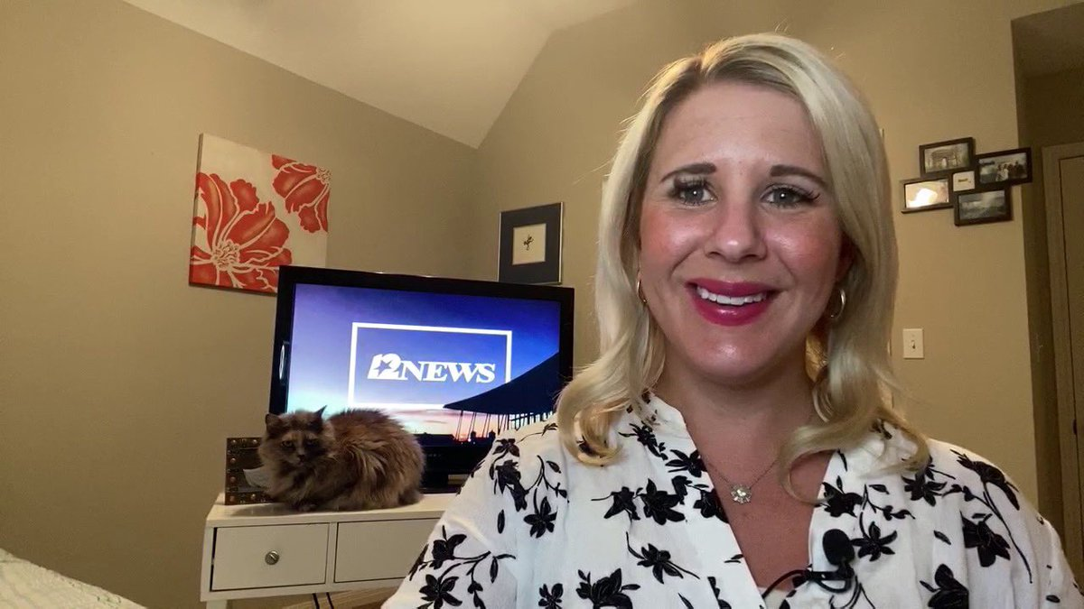 #ICYMI I had a stowaway on @12NewsNow last night.  My #cat, my #coanchor.  She jumped up after main weather and joined me for the #kicker.  #CatMom #CatsOfTwitter #Eevee #fuzz #EeveeIsAStar #CelebCat 😻❤️📺 https://t.co/s7ubjaBfBw