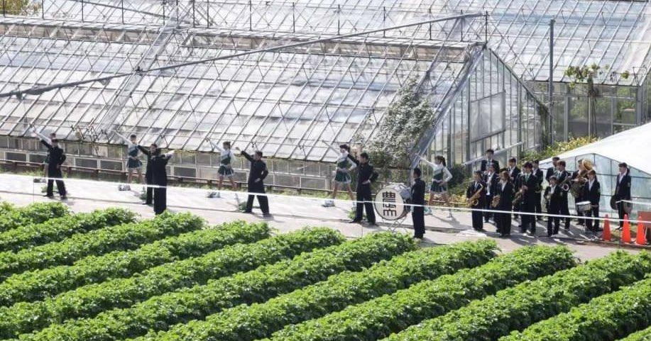 本日は吹奏楽部オンライン新歓第二弾を行いました!参加くださった1年生の皆さん、ありがとうございました😊  応援団、新歓まだまだ続けていきます💪 リーダー部、チアリーダー部、吹奏楽部に興味のある農大1年生の皆さん、DMでご連絡ください‼︎ #東京農業大学 #応援団 #大学1年生 #部活 #サークル https://t.co/DH6VGm0WqY