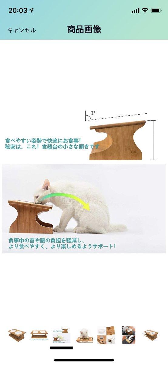 產品的理想使用方法和現實的貓使用的方式 EimFSqIVgAAuAaW