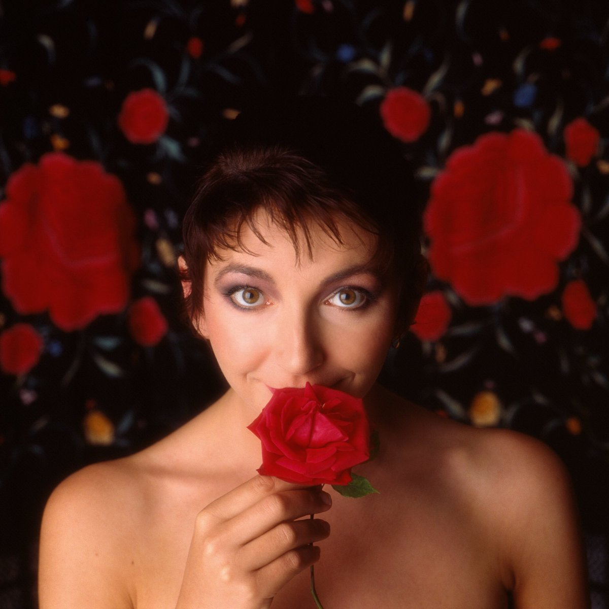 katebushnews photo