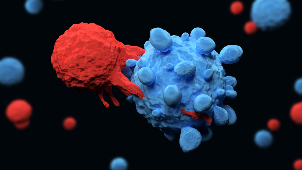 The endogenous ligand TRAIL induces cell death and constitutes a promising molecule for cancer therapies. However, reasons for TRAIL-insensitivity of various tumor-based cancer cell lines remain unclear.  #celldeath #apoptosis #cancertherapy #cellcycle https://t.co/V48XdDdBnP