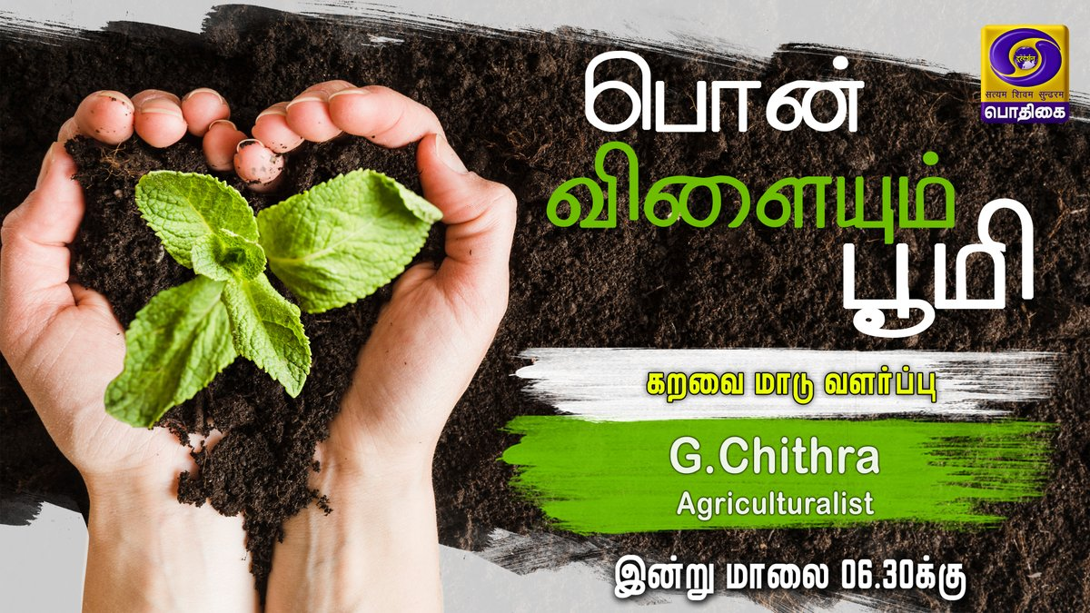 Watch #PonVilaiyumBhoomi @ 06.30 PM , Only On Your Channel @DDPodhigaitv #PodhigaiTamil #agriculture #farming https://t.co/0Lk0nfP65B