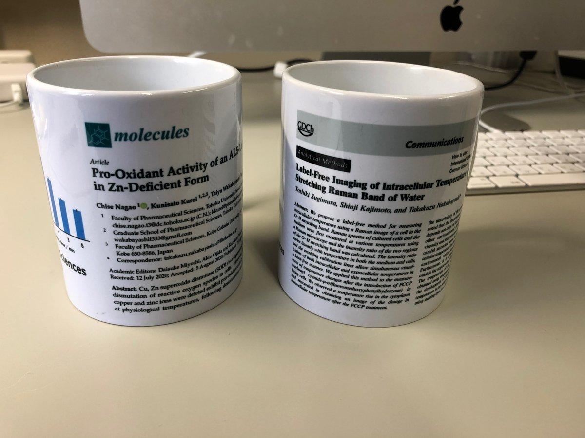 当研究室では、学生さんが筆頭著者の論文が受理された時に、論文が印刷されたカップをその学生さんにプレゼントすることにしました。試しに作ってみたら意外と良い感じでしたので、しばらく続けてみたいと思います(私の自腹ですが、これからも沢山プレゼントしたいです)