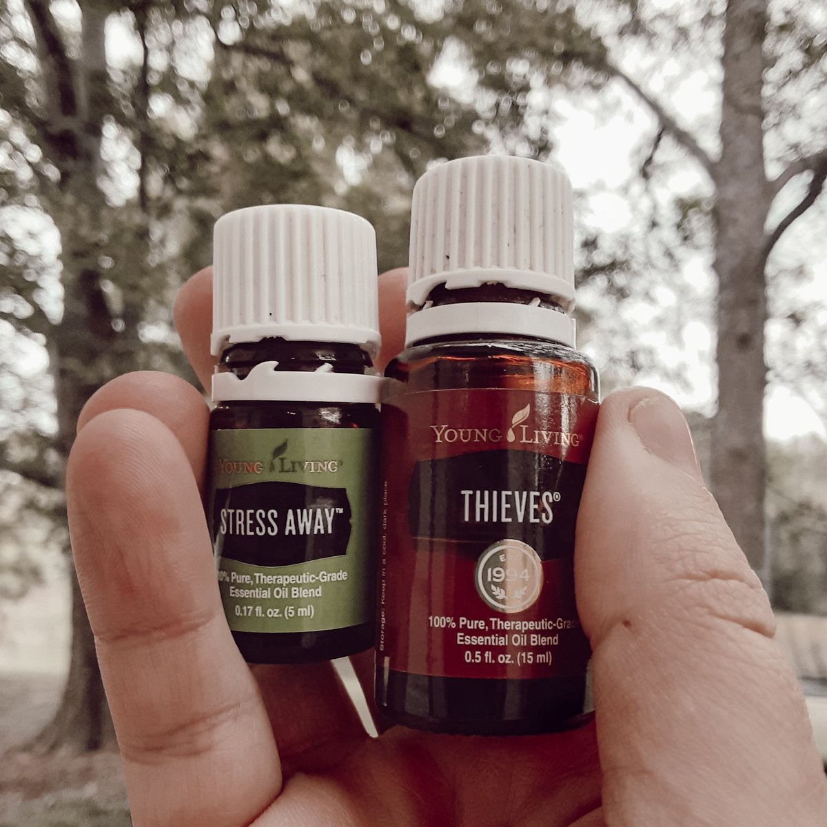 All the #fall vibes going on today with all of the amazing #healthy benefits🌱 are you ready to have fall vibes in your #home everyday? DM me for my link 🍁 https://t.co/dkHSWFK5ZS
