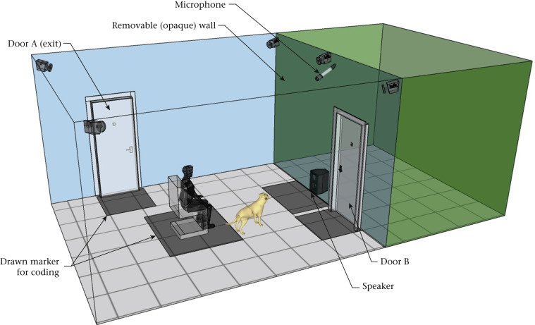 Dogs are more responsive to meowing kittens (separation calls) than they are to crying human babies.  Animal Behaviour, October 2020 Link to paper: https://t.co/ub5ITqfFv1 https://t.co/VnmHs6D7SO