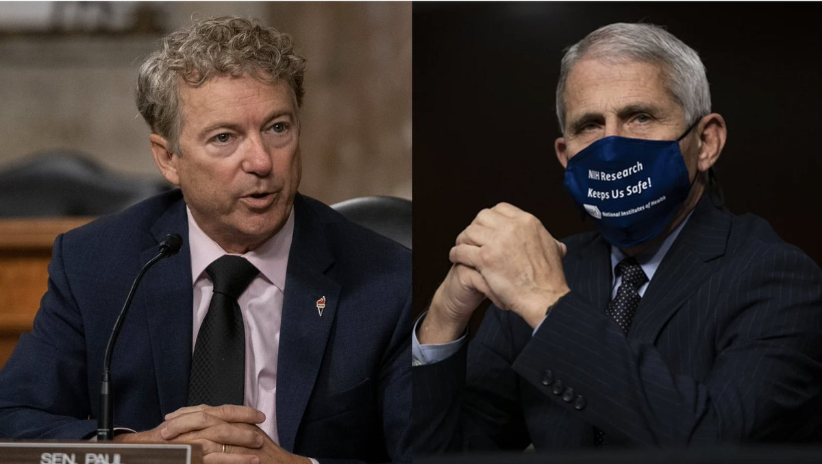 Dr. Fauci knocked Sen. Rand Paul back so hard you'd think he was Paul's neighbor https://t.co/HbbzAXH0AK https://t.co/nYdFaxnGzf