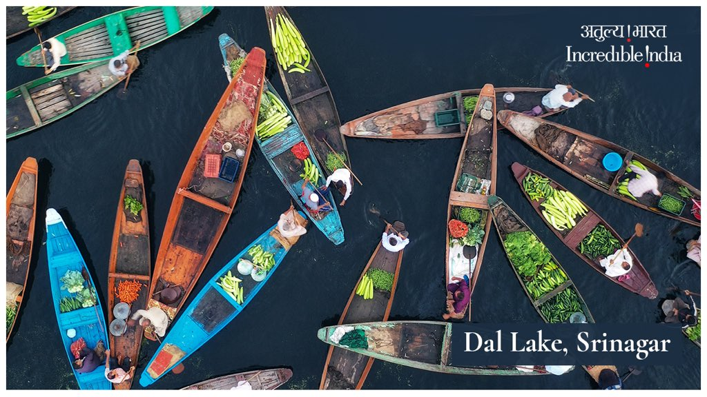 Thank you @EOIHavana for sharing this 🙏🏻  Little is revealed, when from afar, you can see a shikara that carries generous vegetable products. Only when one gets closer does one discover that a bazaar is blooming in a frenzy like no other.   #DalLakeFloatingMarket @JandKTourism