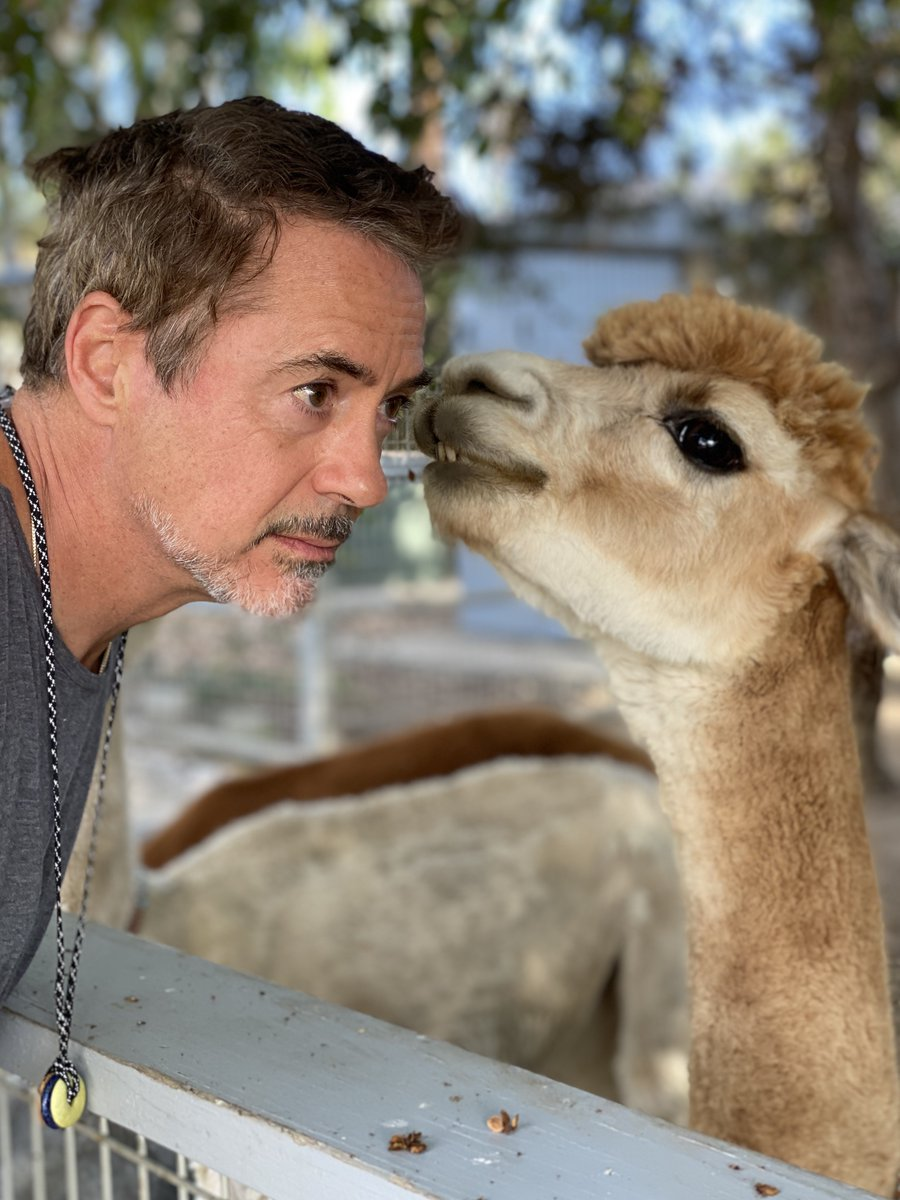 #FuzzytheAlpaca has an exciting announcement. #TheBond will air on @Discovery! Our series dives in to the wondrous and intimate connections between humans and animals. (Because animals are people too, and humans are animals, last I checked.)