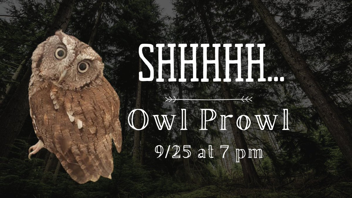 So excited to start the Delaware River Festival that there is an event on Friday. Join us at Berlin Park at 7 pm. Pre-registration required. Visit our website for the link.   Event in partnership with @camdencountynj @Center4AqSci and NJ Conservation Foundation #owls #Hike https://t.co/w7I7cYVdmA