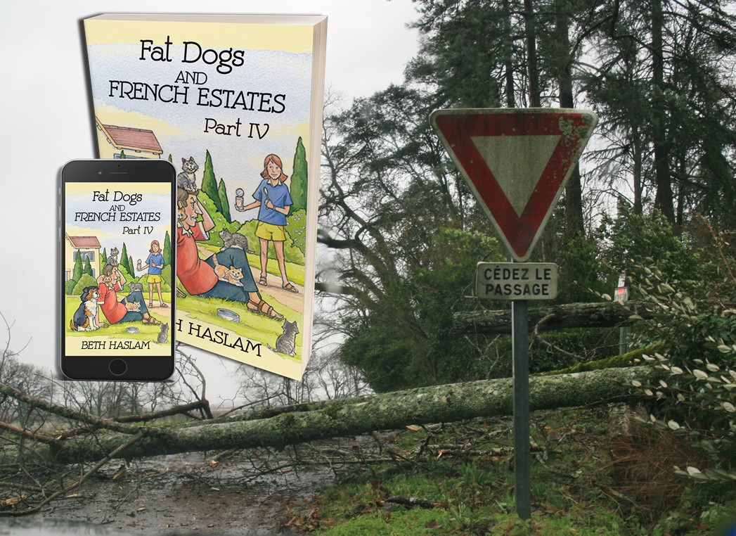 There was a certain irony with that road sign. We will never forget the day tempête Klaus ravaged our area. Do join my Fat Dogs and me to find out what happened.  https://t.co/CjSXDLROMU #BookBoost #book #France https://t.co/MRPzng6SLI