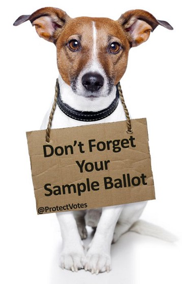 All Ds should also know to bring their completed sample ballots w/ them to the polls. Look for it on your county election website. Alternatively, check https://t.co/zXG4Xpa5iE. 6/ https://t.co/8oypAGhTt0