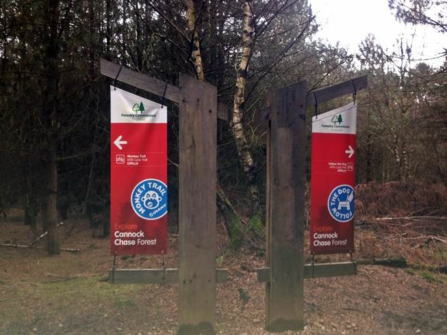 There isn't much of it around at mo but here is some really good news 😀 New Blue Trail And New Red Features Planned for Cannock Chase https://t.co/apYtDA0CdX #cannockchase https://t.co/pismSiWcKq