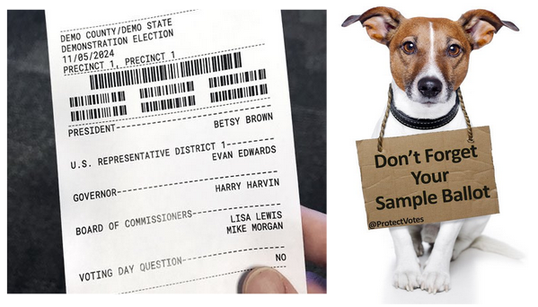 9/ If you must use a touchscreen, then by all means use it! In this scenario, it is crucial that you compare the human readable text beneath the barcode (which may be used in an audit or recount) to your completed sample ballot, especially as to down ballot races. https://t.co/3p5etMhkz9