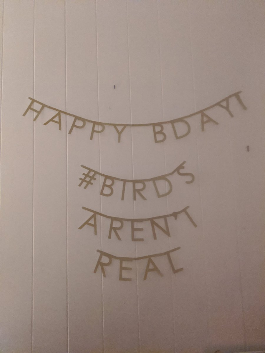 Wishing a happy birthday to my wonderful roommate @SeabirdsEyeView and spreading the truth at the same time #birdsarentreal #gradschool #phdlife https://t.co/EAFAE24j6v